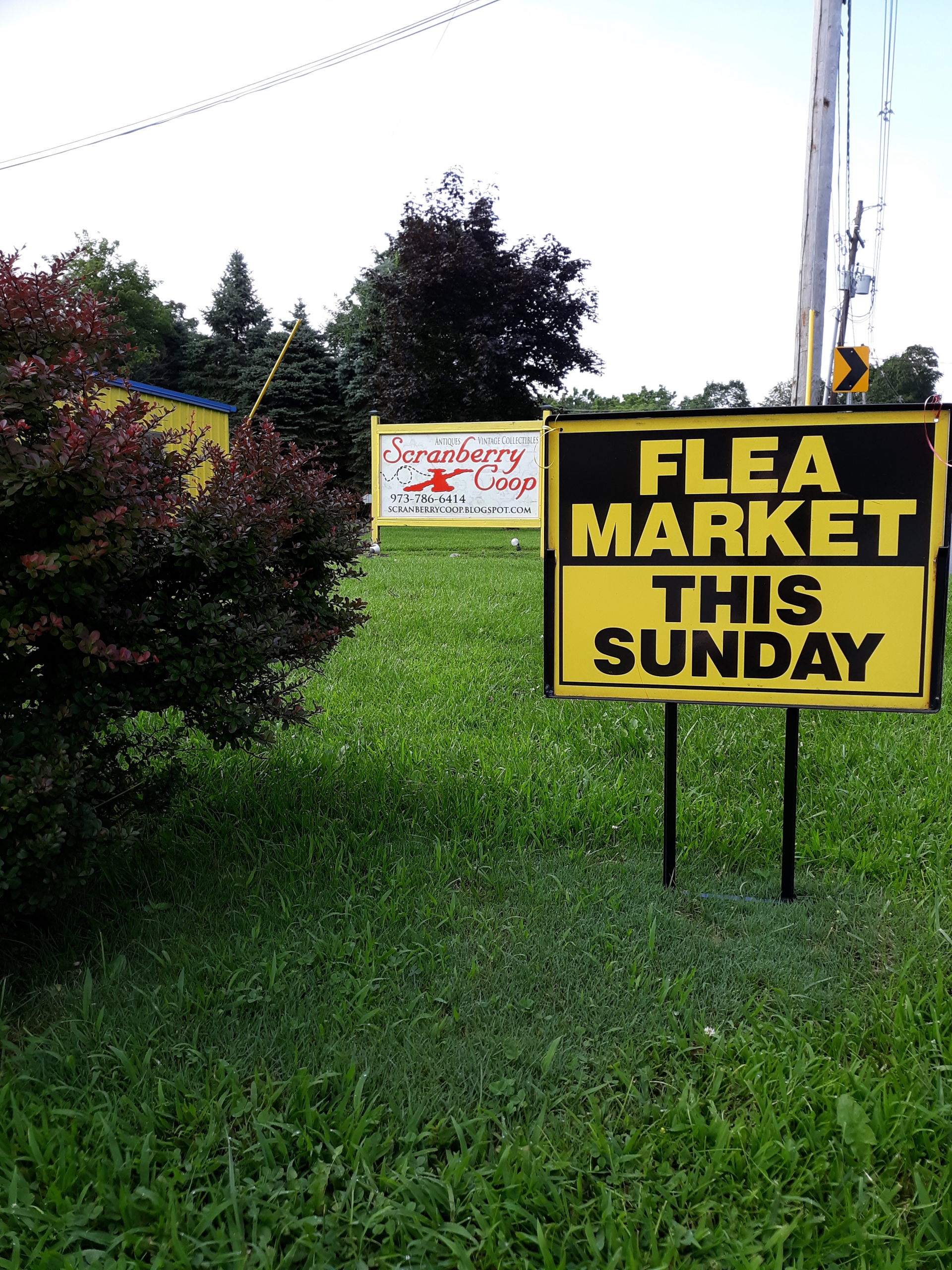 Flea Market - Scranberry Coop - Vintage Store - Antiques, Collectibles, & More