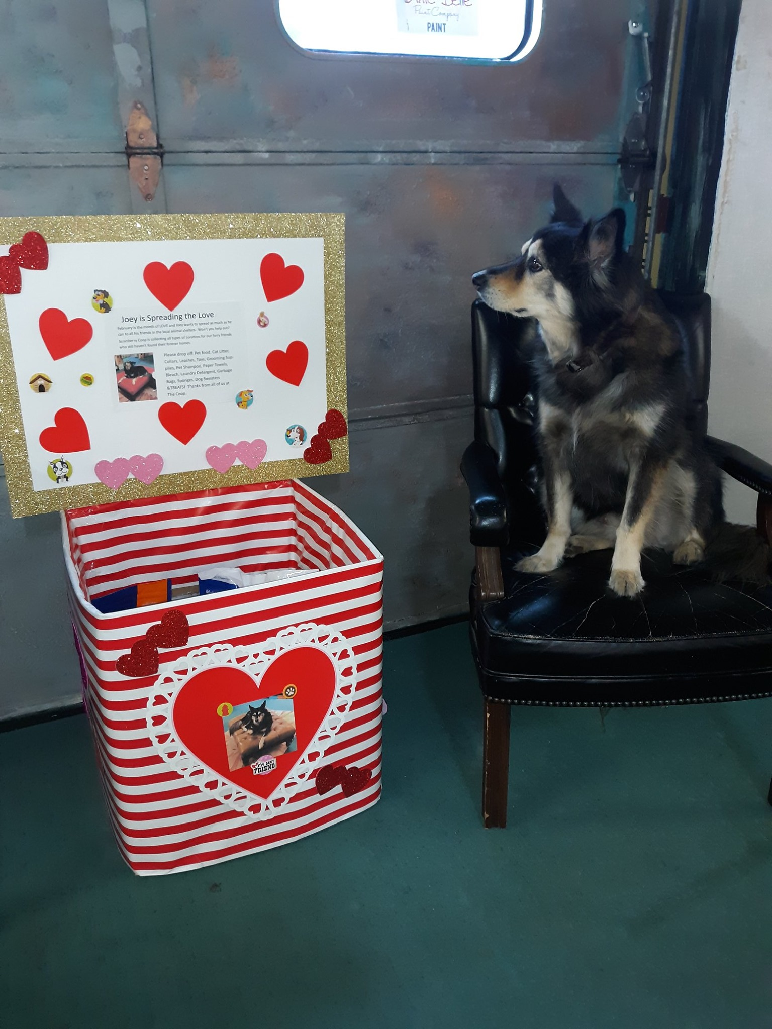 Joey is Spreading the Love! - Scranberry Coop - Vintage Store - Antiques, Collectibles, & More